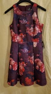 NWT Adrianna Papell Women's Pleated Dress